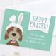 Happy Easter - Funny Dog Easter Card - Wink Design