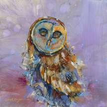 Huckleberry Owlet- Bird- Limited Edition