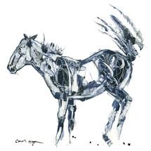 Horses - Cavallo - Scratchy Buck