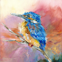 Baby Kingfisher #19 - Sold