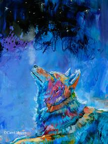 """Winter Night Lights"" print on metal by Carol Hagan."