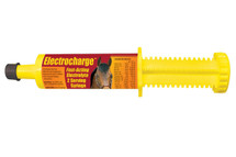 Finish Line Electrocharge Paste in Tube Syringe