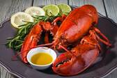 """24 Pack """"One Pound and a Quarter"""" Size (1.20lb-1.40lb each) HARDSHELL MAINE LOBSTER"""