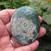 Moss Agate Palm Stone