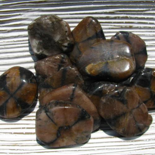 Tumbled Chiastolite slabs