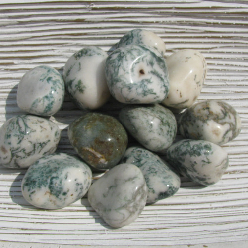 Tumbled Tree Agate Stones