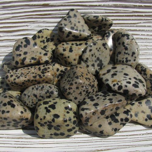 Dalmatian Jasper Tumbled Stones