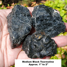 Black Tourmaline Rough, Medium Sized