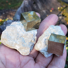 Pyrite Cube in Matrix, Spain