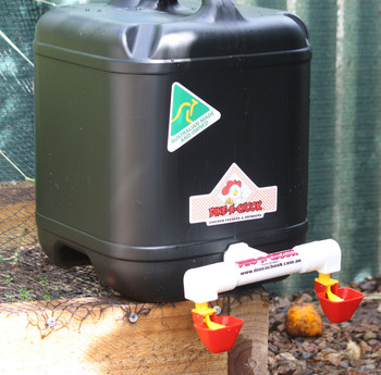 Australian-made Chicken Drinker with Twin Lubing Drinker Cups. 20 Litre Black Plastic Drum Drinker for Chickens and Poultry. Dine a Chook is Australia's favourite Chicken Feeder and Drinker manufacturer. We ship daily to NZ via registered post.