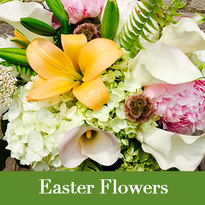 A fine selection of Easter Flowers from Milwaukee Florist, The Flower Lady