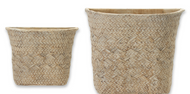 """Thyme"" Cement Basket Pot"