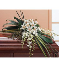 Orchid Casket Spray