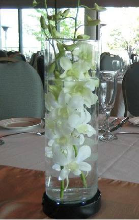 Dendrobium Orchid Centerpiece The Flower Lady