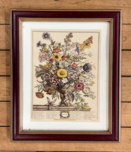 "Robert Furber ""Twelve Months of Flowers"" Print, November"