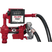Fill-Rite High-Flow Pump with Model 901 Meter - 12 Volt DC, 20 GPM, Model FR4211D
