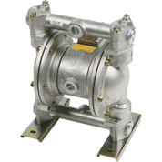 LiquiDynamics Biodiesel Double Diaphragm Pump - 3/4in., Model# 20015-YB