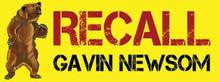 Recall Gavin Newsom - 9 x 3.375  Inch Political Bumper Sticker