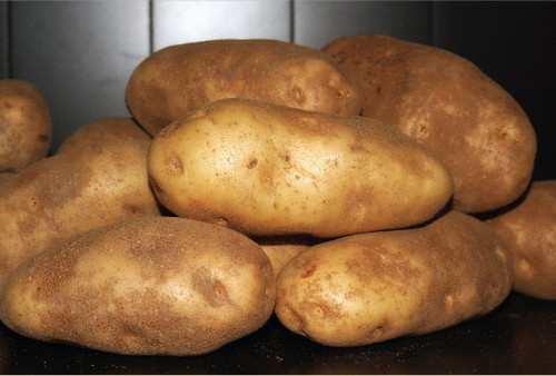 Idaho Potatoes - 50 lb box