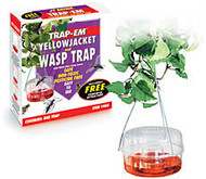 Yellow Jacket and Wasp Traps