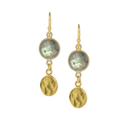 Gold Plated Sterling Silver Zaneta Stone Circle Charm Drop Earrings