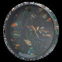 """Remo - OCEAN DRUM, 16"""" Diameter, 2 1/2"""" Depth, Fish Graphic - ET-0216-10-"""