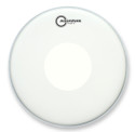 "Aquarian 10"" Focus-X Coated With Power Dot"
