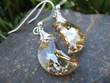 Golden Crystal Moon Earrings