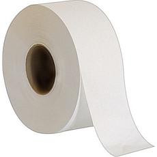 Envision Toilet Tissue, 2 Ply, Jumbo Jr., White, Paper, Roll (8 Rolls Per Case)