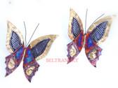 Butterfly-074