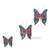 Butterfly-025
