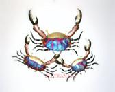 exotic crabs-113