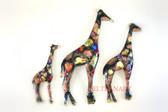 Giraffe-149