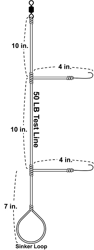 blackfish-hilo-2-hook-rig-diagram-final-jpg.jpg