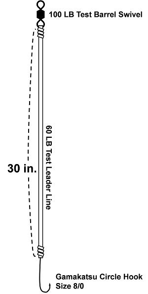 drum-rig-circle-hook-diagram-final-300px-h.png