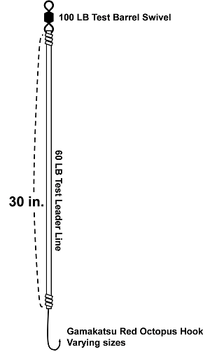 drum-rig-oct-hook-w-fishfinder-diagram-final-300px-w.png