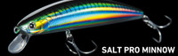 Daiwa Lures - Salt Pro SP Minnow (6 Inch Floating)