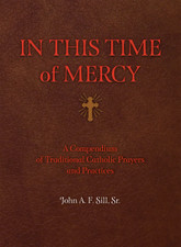 In This Time of Mercy (Paperback)