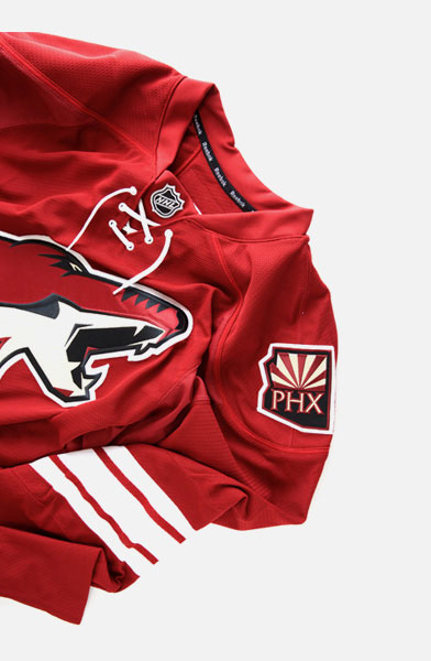 NHL Pro Stock Hockey Jersey   Accessories 3534719a757