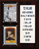 """MLB8""""X10""""Ted Williams Boston Red Sox Career Stat Plaque"""