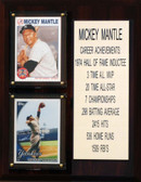"""MLB8""""X10""""Mickey Mantle New York Yankees Career Stat Plaque"""