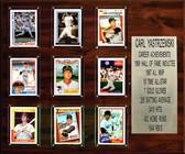 "MLB 15""x18"" Carl Yastrzemski Boston Red Sox Career Stat Plaque"