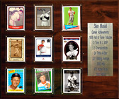 """MLB 15""""x18"""" Stan Musial St. Louis Cardinals Career Stat Plaque"""