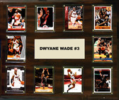 "NBA 15""x18"" Dwyane Wade Miami Heat Player Plaque"