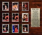 "NBA 15""x18"" Michael Jordan Chicago Bulls Career Stat Plaque"