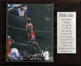 "NBA 12""x15"" Michael Jordan Chicago Bulls Career Stats Plaque"