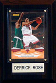 "NBA 4""x6"" Derrick Rose Chicago Bulls Player Plaque"