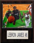 "NBA 12""x15"" LeBron James Miami Heat Player Plaque"