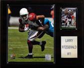 "NFL 12""x15"" Larry Fitzgerald Arizona Cardinals Player Plaque"