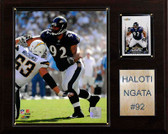"NFL 12""x15"" Haloti Ngata Baltimore Ravens Player Plaque"
